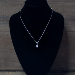 zilver pedant ketting